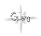 star-studio gallery